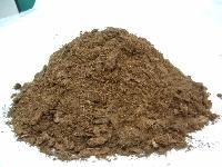 Medium Blond Peat